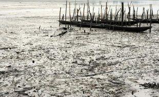Des bateaux de pêcheurs Bodo, abandonnés dans les eaux polluées par d'importantes fuites de pétrole, à Ogoniland dans le delta du Niger, le 11 août 2011