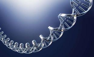 Un fragment d'ADN.