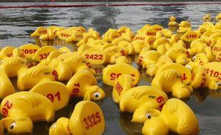 Une course de canards en plastique (photo d'illustration