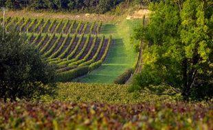 La région viticole du Bordelais est la plus étendue de France.