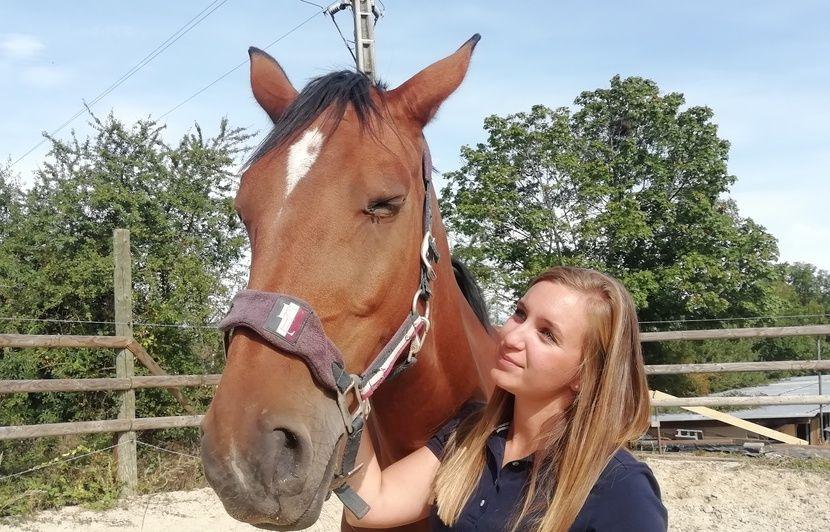 VIDEO. Lyon : On a testé l'équicoaching pour reprendre confiance en soi grâce aux chevaux