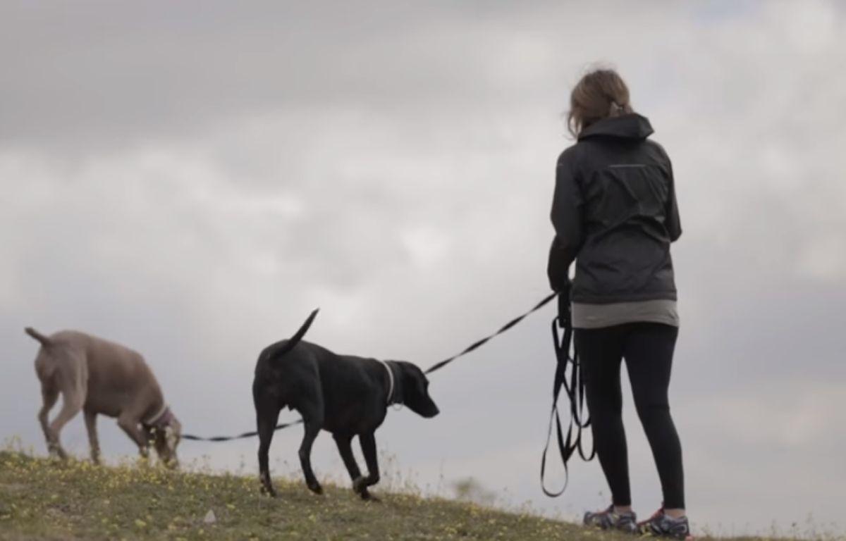 La plateforme Gudog met en relation des propriétaires et des dogsitters  – Gudog/DR