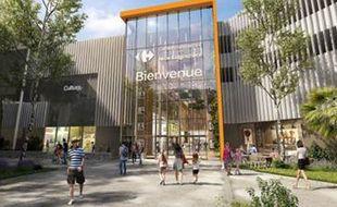 Le projet du centre commercial Carrefour à Lingostière (Illustration)
