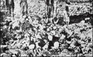 La Turquie rejette catégoriquement la thèse d'un génocide, estimant qu'il s'agissait d'une répression dans un contexte de guerre civile où les Arméniens se sont alliés aux troupes russes qui avaient envahi l'empire ottoman.