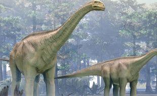 L'affiche de l'exposition du muséum de La Rochelle, illustrant des sauropodes, comme il en vivait sur le territoire de l'Aquitaine il y a 140 millions d'années.