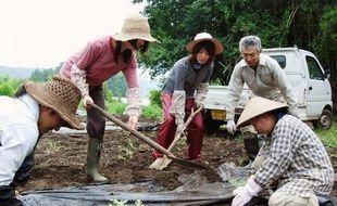 Des wwoofeurs dans une ferme bio au Japon, en juillet 2009.