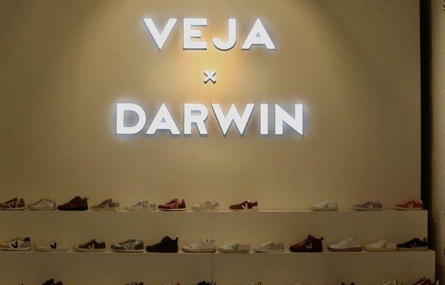 La marque de sneaker Veja, s'est installée dans les locaux de l'écosystème Darwin à Bordeaux