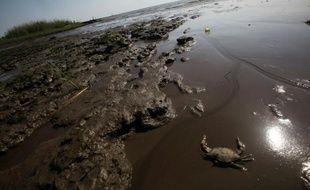 Les effets d'une marée noire sur une plage d'Ocean Springs, dans le Mississippi, le 17 avril 2011