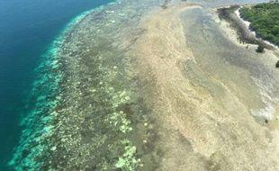 Le blanchiment de la Grande Barrière de corail au large du Queensland australien est une des conséquences les plus préoccupantes du réchauffement climatique. (image d'illustration)