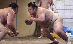 Un combat de sumo. Image d'illustration.