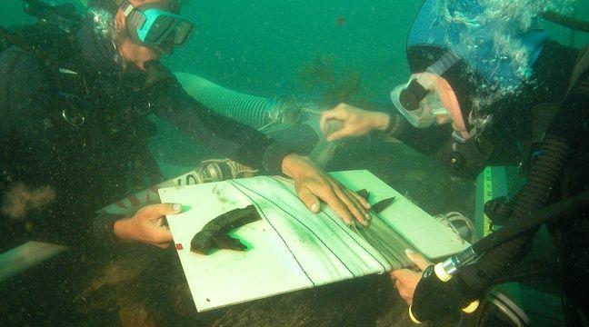 On estime à plus de 3.500 le nombre d'épaves immergées au large de la Bretagne. – Teddy Seguin / ADRAMAR