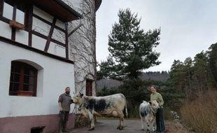 Dynamo, à droite, et Manioc, à gauche, participent à leur premier Salon de l'Agriculture.