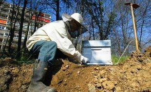 L'association Naturama installe dix ruches à Lyon pour mesurer les polluants de la ville à partir du miel produit. Le 21 mars 2011.
