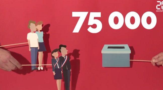 Capture d'écran de vidéo de la Netscouade sur les modalités de l'élection des sénateurs. – 20 Minutes/ Netscouade