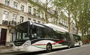 Lille, le 25 aožt 2011. Illustration bus : la Liane de Transpole.