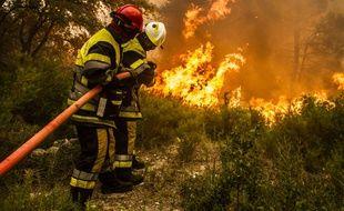 Intervention de sapeurs pompiers sur un feu de forêt.