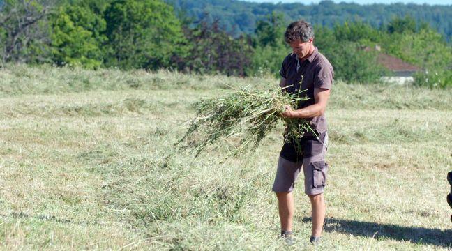 Carton d'audiences pour « Nous paysans » sur France 2 - 20 Minutes