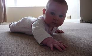 Les bébés, qui passent beaucoup de temps au sol, seraient particulièrement exposés au substances toxiques contenues dans les moquettes (illustration).