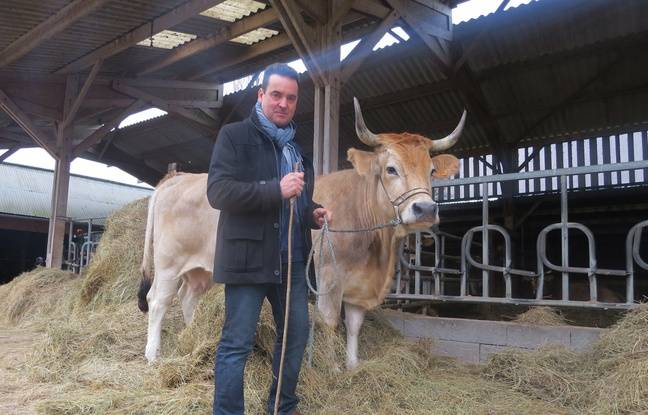 Laurent Chalet et Déesse, sa vache nantaise