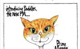 Le chat de la Première ministre avait des milliers d'abonnés sur Twitter.