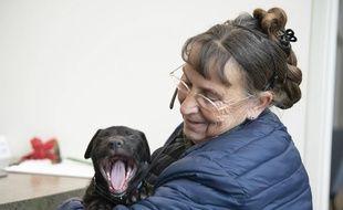 Un chien en train de bâiller (illustration).