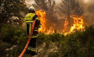 Illustration lors d'un feu de forêt.