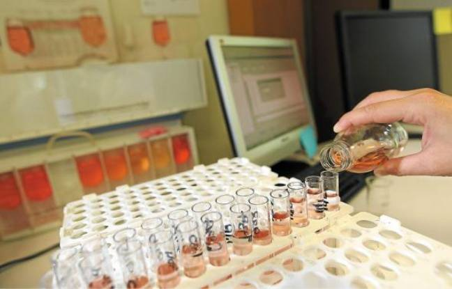 Vinification, macération, robe, arômes... La composition des rosés et leur mode de fabrication sont décortiqués.