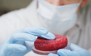 La viande artificielle pourrait bientôt se retrouver dans les rayons des supermarchés