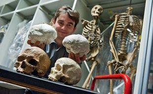 Antoine Balzeau avec à gauche le crâne fossile de Cro-Magnon et le moulage de son cerveau, et à droite un crâne d'homme actuel et son moulage de cerveau.