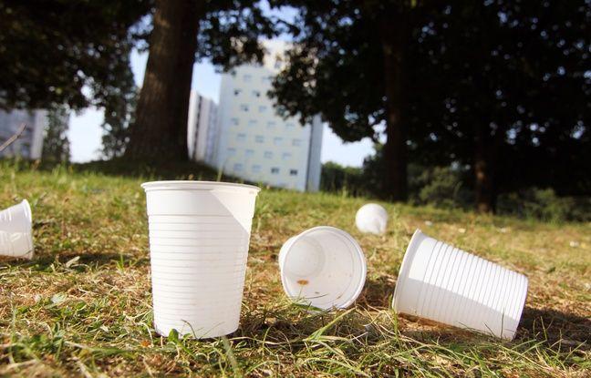 Des gobelets en plastique, ici laissés sur une pelouse du quartier du Blosne à Rennes, le 20 juin 2017.