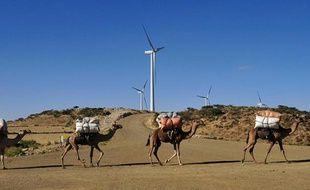Des chameaux marchent le long d'un champ d'éoliennes à Ashegoda, en Ethiopie, le 28 novembre 2013