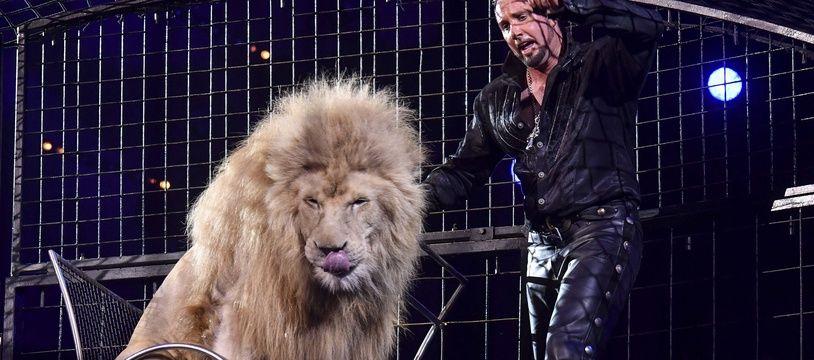 De nombreuses municipalités ont déjà interdit la présence de cirques animaliers.