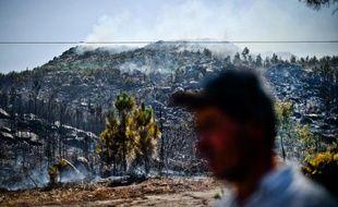 Les feux de forêt au Portugal sont repartis mercredi après-midi,après une brève accalmie dans la matinée, mobilisant plus de 1.100 pompiers dans le nord et le centre du territoire, selon la protection civile.