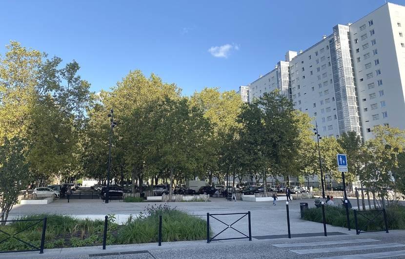 Bordeaux : Le plan « Je marche à l'ombre » du maire Nicolas Florian, pour replanter des arbres en ville