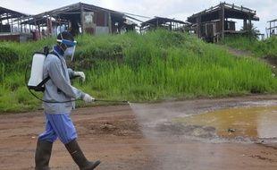 Désinfection sur une route au Liberia, juillet 2015.
