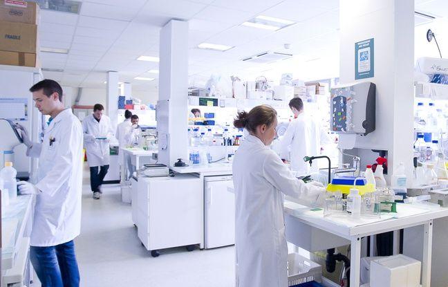 Dans les laboratoires du bâtiment Cheney, au centre Léon-Bérard à Lyon.