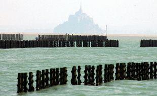 La baie de Cancale et du Mont Saint-Michel sont écrasées sous le poids des moules sous taille qui croupissent au fond de l'estran.