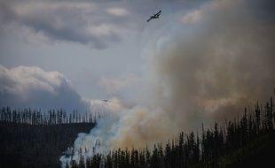 Un incendie dans le National Glacier Park