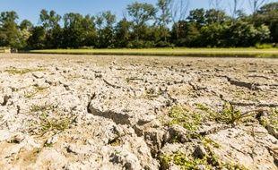 Cinq départements d'Ile-de-France doivent se soumettre à des mesures de restriction en eau en raison de la sécheresse.