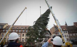 Strasbourg le 31 octobre 2016. Sapin de Noël 2016. Arrivée place Kléber à Strasbourg.