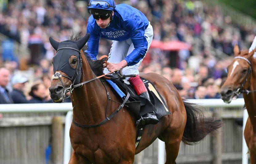 Chevaux de course: Un yearling vendu 800.000 euros à Deauville