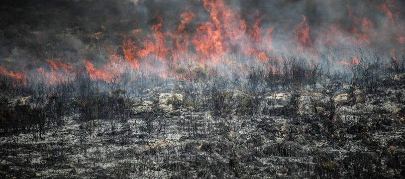 Un feu de foret en Syrie.