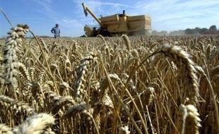 La majorité des agriculteurs et des industriels se sont montrés satisfaits jeudi des décisions du Grenelle de l'Environnment sur la réduction des traitements par les pesticides, mais restent très divisés sur la question des OGM.