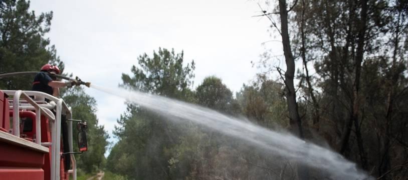 Illustration de pompiers intervenant lors d'un incendie dans une forêt de pins. - Photo : Sebastien Ortola