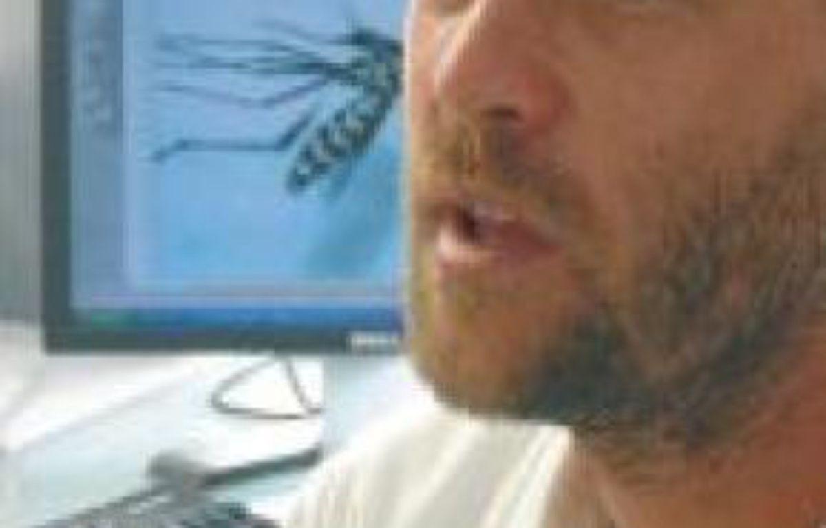 Jean-Baptiste Ferré, entomologiste, surveille de près l'insecte. –  N.KADEN/ 20 MINUTES