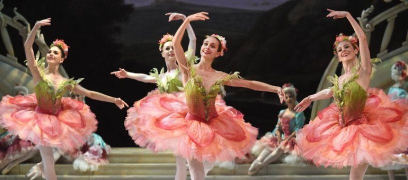 """Des danseuses  de l'Australian Ballet lors d'une répétition générale de """"La Belle au bois dormant""""à l'Opéra de Sydney."""