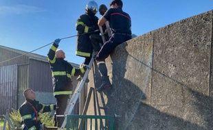 Les pompiers ont pu extirper la victime de la fosse à lisier.