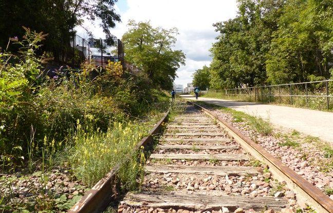 Tag histoire sur Tout sur le rail 648x415_21-aout-2014-visite-commentee-du-troncon-d-1-3-km-de-la-petite-ceinture-qui-a-ete-reamenage-dans-le