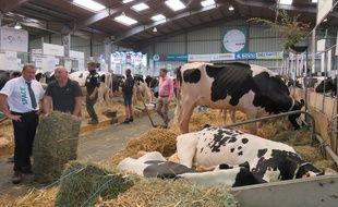 Le Space, salon international des productions animales, se tient jusqu'à vendredi à Rennes.