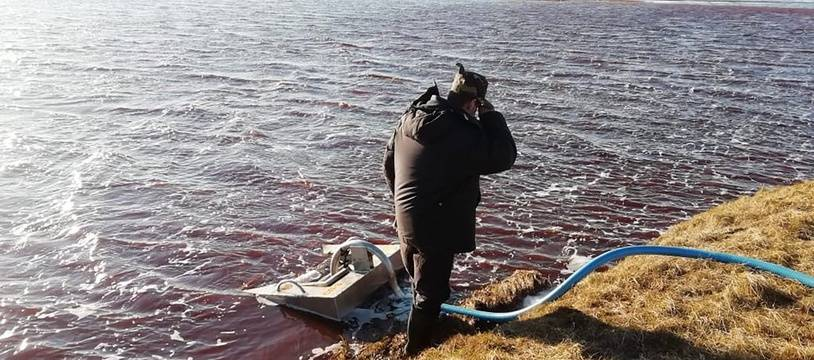Des équipes de secours cherchent à pomper le Diesel de la rivière Ambarnaya en Russie, le 4 juin 2020.